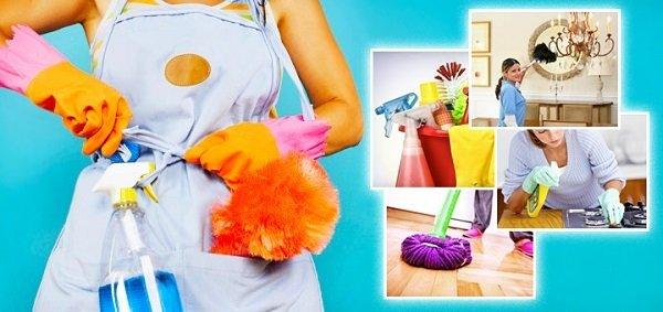 Тщательная уборка поможет в борьбе с тараканами