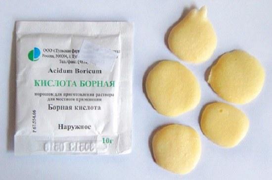 Борная кислота: народное средство избавления от тараканов