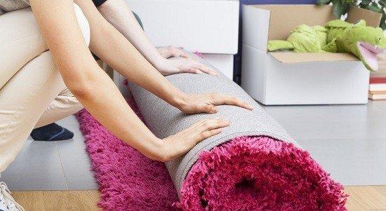 Уберите ковры и паласы перед обработкой инсектицидом