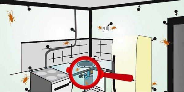 Обрабатываем гелем от тараканов все возможные места на кухне