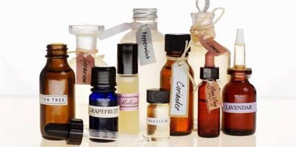 Запах эфирных масел непереносим для блох
