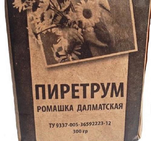 Пиретрум: надежное растительное средство, помогающее удалить блох