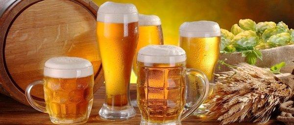 Пиво является хорошей приманкой для мошек