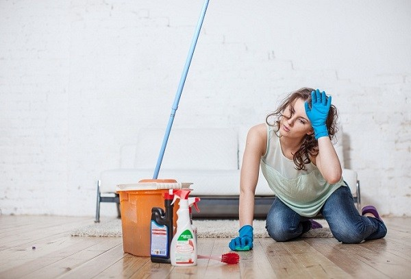 Частая влажная уборка поможет справиться с блохами