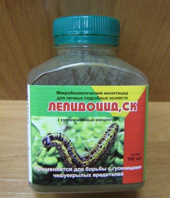 Лепидоцид: средство для обработки урожая от картофельной моли