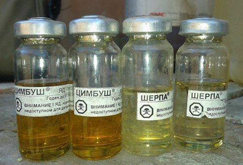 Цимбуш - эффективный инсектицид в борьбе с картофельной молью