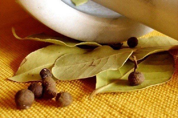 Лавровый лист хорошо отпугивает тараканов