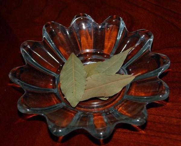 Лавровые листья от тараканов