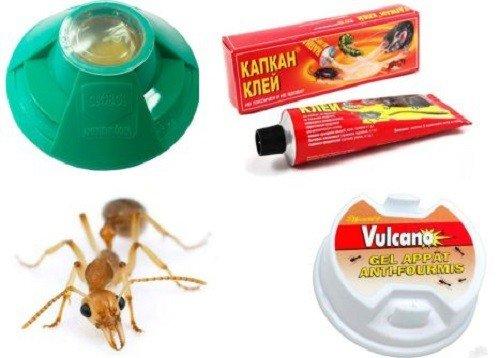 Ловушки для муравьев и других ползающих насекомых