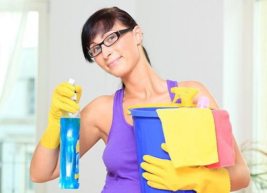 В борьбе с молью чистота помещения - залог успеха