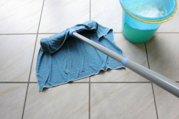 Влажная уборка помещения - профилактика появления мошек
