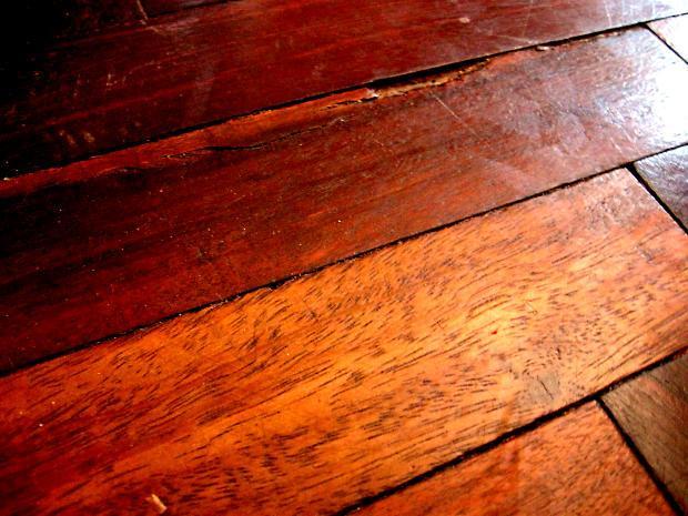 Клопы могут проникнуть в квартиру через щели в полу