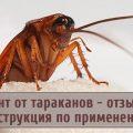 """""""Регент"""": надежное средство от тараканов"""