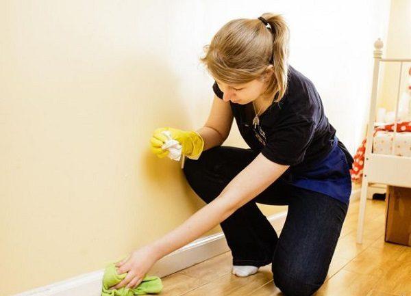 Перед обработкой помещения необходимо провести влажную уборку