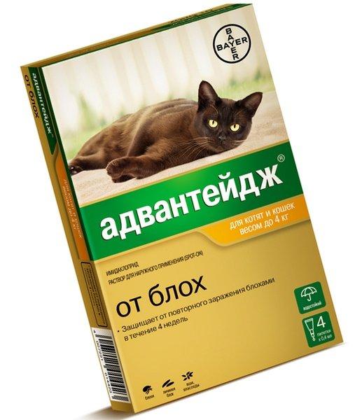 Капли Адвантейдж против блох у кошек