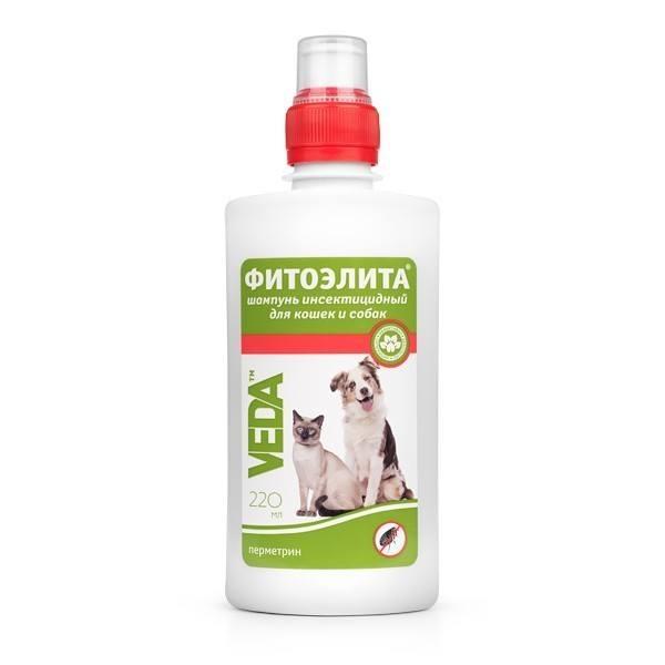 Фитоэлита - отличный шампунь против блох у кошек