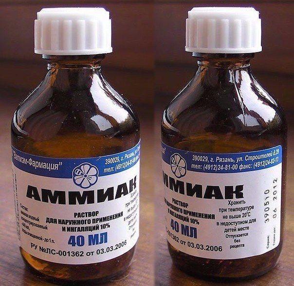 Аммиак: надежное средство для профилактики появления тараканов