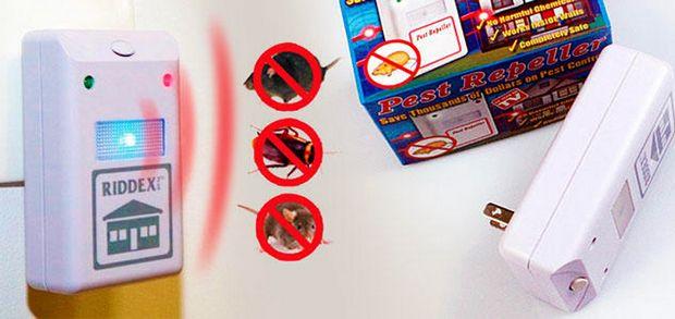 Ультразвуковые приборы действуют негативно на насекомых