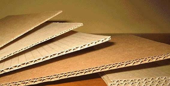 Гофрированный картон поможет собрать клопов