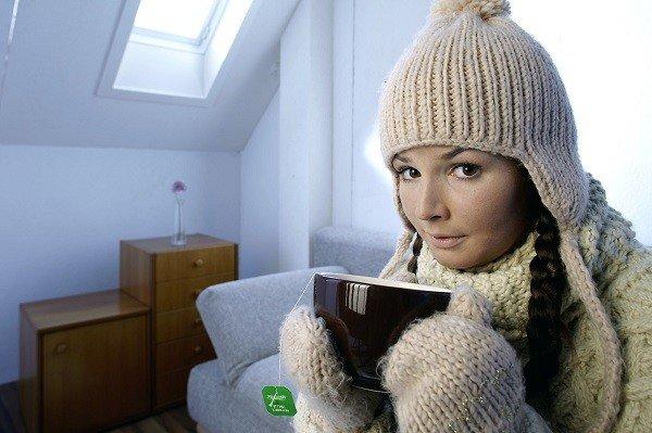 Холод в помещении заставит клопов покинуть квартиру