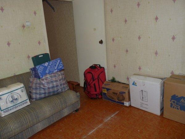 На новой квартире Вас могут ожидать клопы
