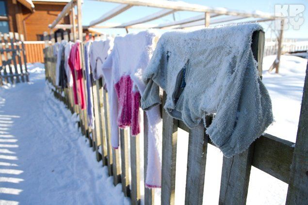 Вынесите одежду на мороз и личинки моли погибнут