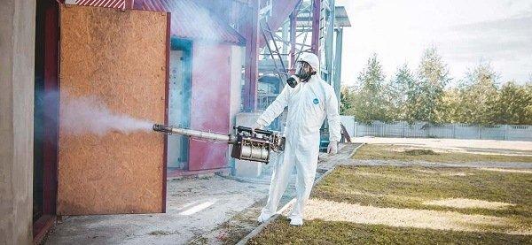 Обработка зерна от мучного клеща