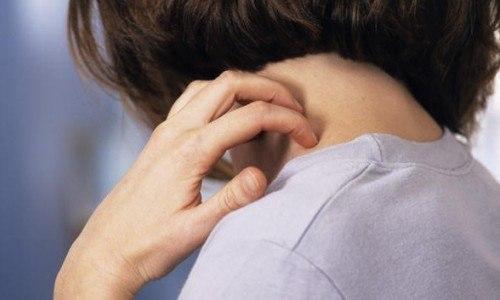 Сильный кашель и зуд на коже - первые признаки появления мучного клеща