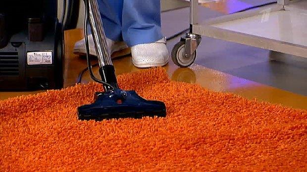 Пропылесосьте ковры и мягкую мебель от клопов и их яиц