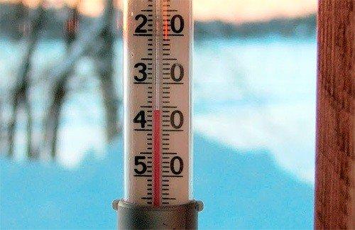 Клопы не переносят слишком низкую или слишком высокую температуру