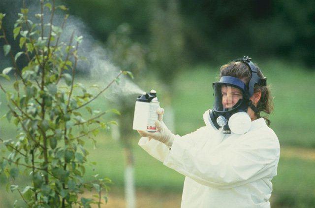 Препараты против огородных вредителей необходимо менять каждый раз