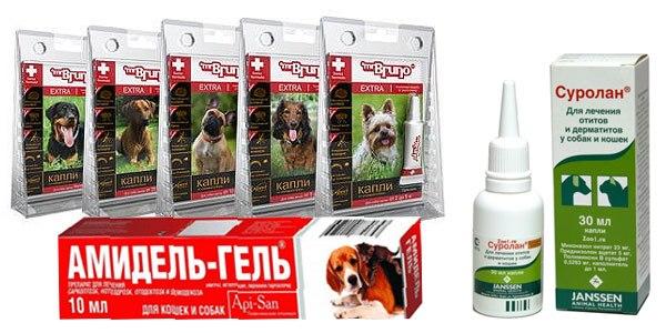 Какое средство выбрать для собаки против клещей?