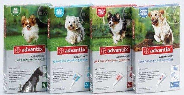 Капли Advantix на холку против клещей для собак