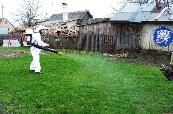 Санобработка участка - самое эффективное средство борьбы с насекомыми