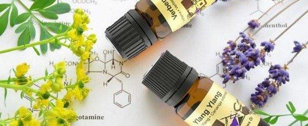Эфирные масла помогут облегчить зуд после укусов клопов