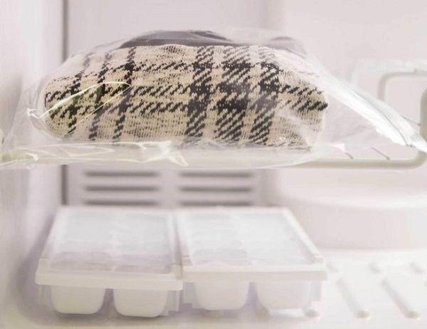 Проморозьте вещи в морозилке - вши и гниды погибнут