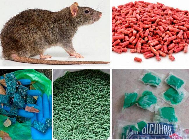 Крысиный яд красные зерна