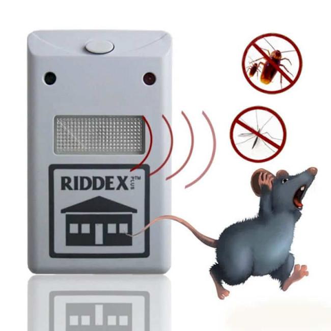 Ультразвуковой и электронный отпугиватель крыс и мышей: какой лучше (отзывы)