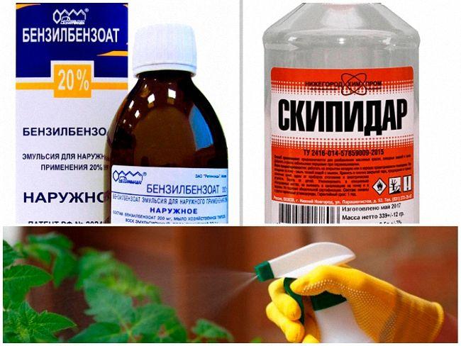 Applaud Plus (Аплауд Плюс) 1кг – инсектицид от белокрылки и щитовок